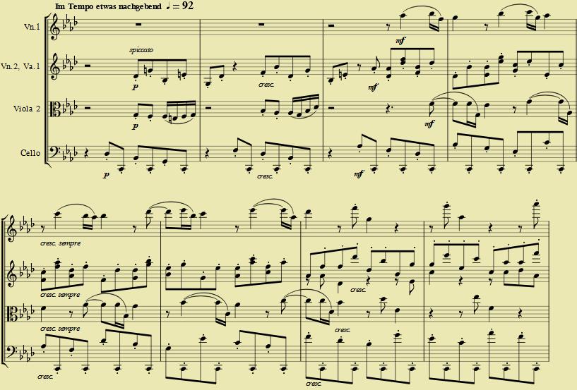Resume and Experience   Bruno Nasta Studio Violin Viola Electric     Lee Anderson viola